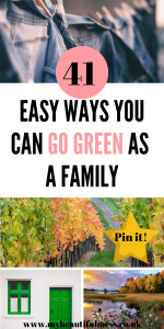 Here are 41 ways you can go green as a family that are super quick by Laura at My Beautiful Mess #GoGreen #EcoLiving #EasyEcoLiving