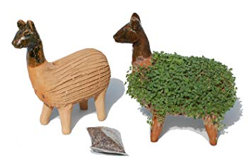 Tumia LAC Grow your own llama cress figure*