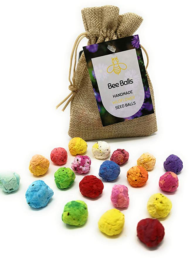 Flower Bee Balls - Native Wildflower Seed Balls, Grow Beautiful Flowers in Your Garden to Help Bring Back The Bees*