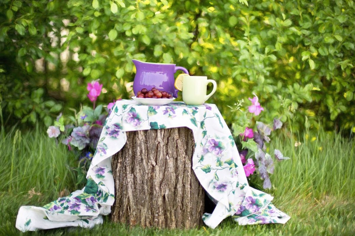 A log with a table cloth with a purple jug and white cup