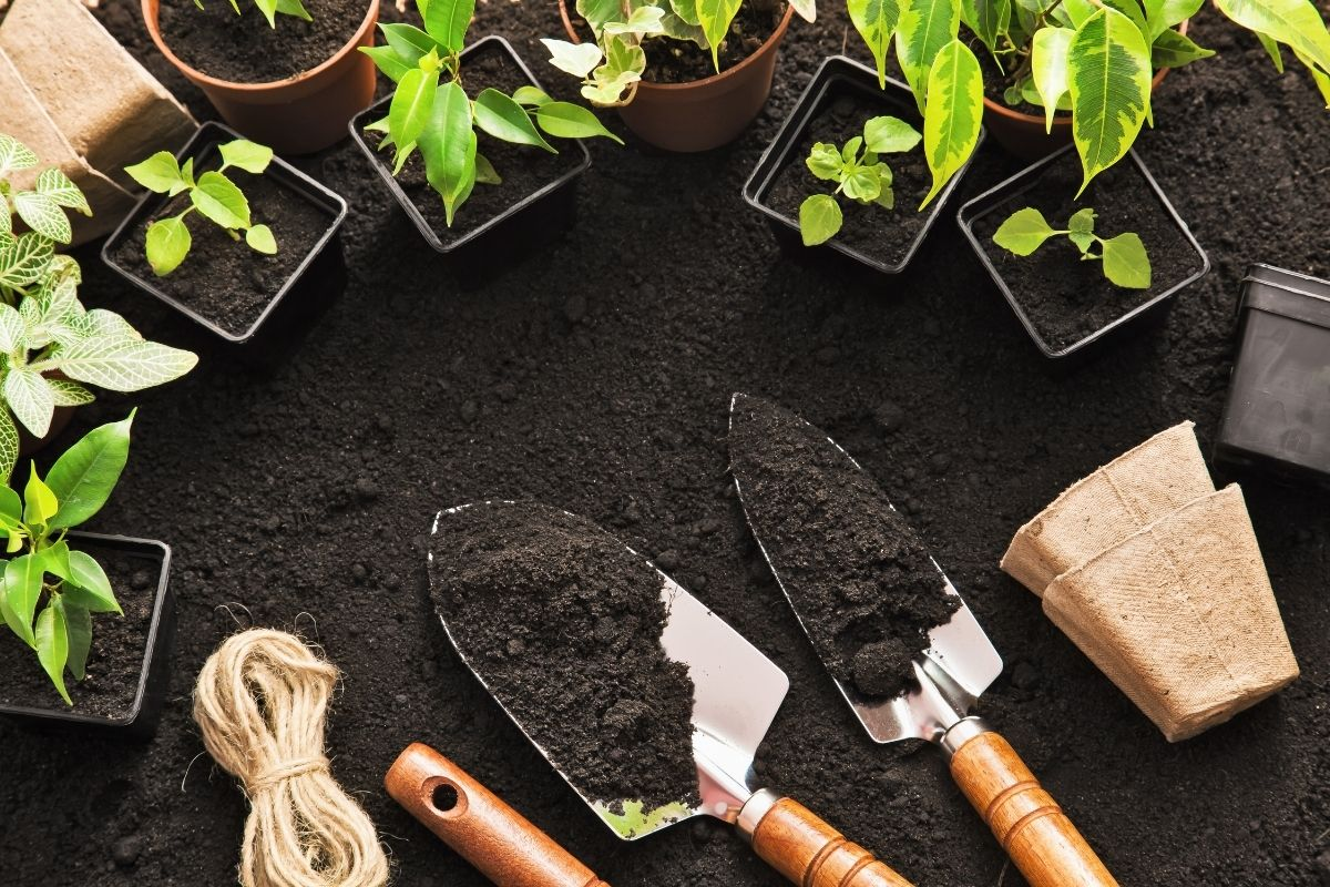 Soil with gardening tools