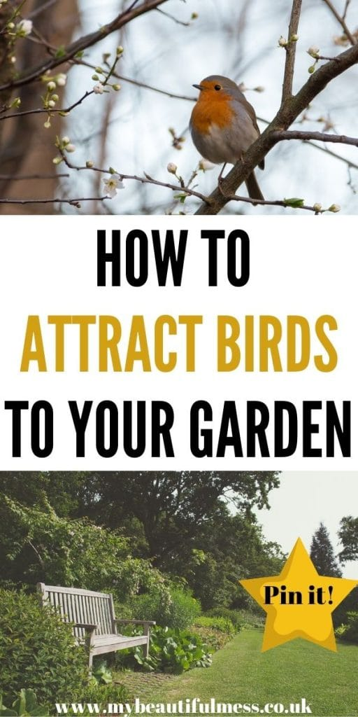 This is how to attract birds to your garden during the winter months. This includes bird feeder ideas and other ways to keep birds in your garden by Laura at My Beautiful Mess